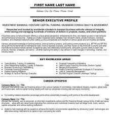Banking Executive Resume Templates