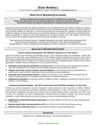 Typical Business Development Cv Example Sales Resume Format Samples