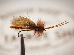 Salmon Fly Patterns Magnificent Pro Tips Top 48 Salmonfly Dries For The Madison River Orvis News