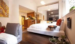 Studio Design Ideas  HGTVDesign For One Room Apartment