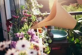 wallitsch garden center your garden