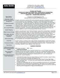 Senior Executive Resume Samples Click Here To Download This
