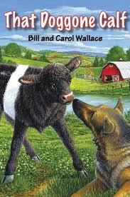 that doggone calf