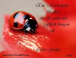 Liebe Grüsse Sprüche Facebook Gb Bild Facebook Bilder Gb Bilder