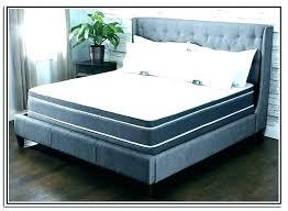 Sleep Number Adjustable Bed Split King Assembly Reviews Frame For Sale
