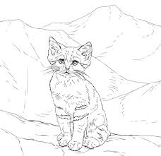 kitten printable coloring pages. Beautiful Pages Sand Cat Kitten Coloring Page In Printable Coloring Pages