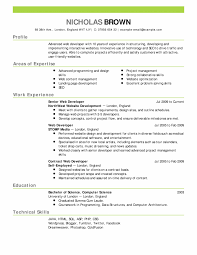 Resume Examples Jobstreet Best Professional Resume Templates