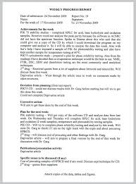 Business Progress Report Template One Page Site In Work Word