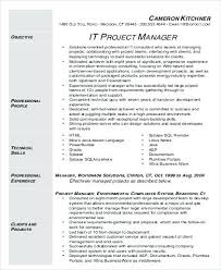 Project Management Resume Example It Project Manager Resume Sample
