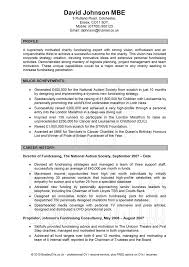 Good Resume Profile Examples