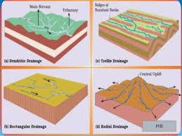 Drainage Patterns Impressive 48 Stunning Define Trellis Drainage Pattern Trellis Ideas 48