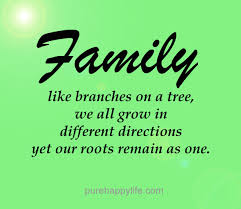 Family Life Quotes Delectable Family Quote Family Like Branches On A Tree We All Grow In