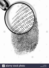 125409685 Alamy Code In Binary Stock Glass Showing Fingerprint - Magnifying Photo