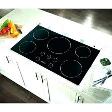 induction reviews inch range monogram wolf portable countertop induc