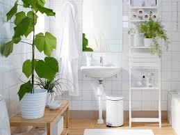 bathroom: Fresh Good Bathroom Plants Choice For Interesting Bathroom Design  With Wall Tile And White