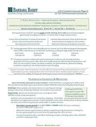 Interesting Executive Resume Writing Service Executive Resume