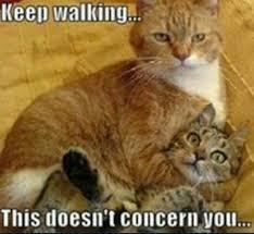 Keep walking!   Humor   Pinterest   Memes and Humor
