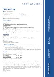 cv professional format cv sample for professional teodor ilincai