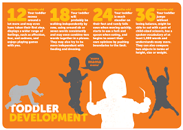 developmental milestones chart development of toddler lessons tes teach