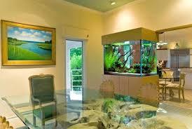 aquarium furniture design. Aquarium Stand Ideas Stylish Design For Natural Dining Room Using Glass Table Furniture