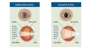 Normal Pupil Size Chart Dilated Eye Exams Why A Pupil Dilation Test Is Important