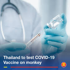 ASEAN - Thailand is conducting tests to produce an...