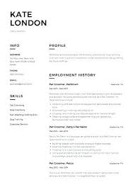 Example It Resume Busboy Resume Sample Within Busboy Resume Sample ...