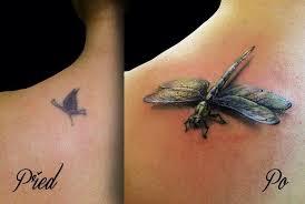 Tetování Hmyz Vícebarevné Záda Tetování Tattoo