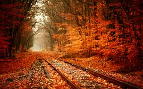 fall nature backgrounds. Fine Backgrounds Fall Nature Backgrounds For O