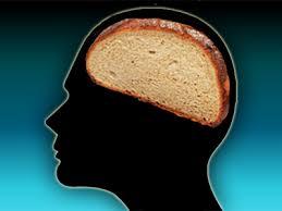 grain brain ile ilgili görsel sonucu