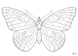 Painted Lady Butterfly Coloring Page From