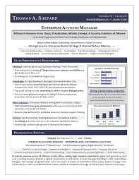 Best Executive Resume Writer Award Winning Sales Sample Resume By