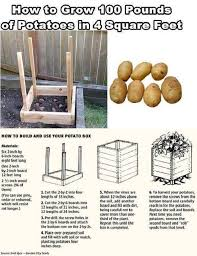 Small Picture Best 25 Grow boxes ideas on Pinterest Water containers Self
