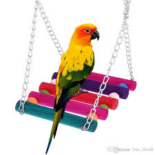 2019 atiel parrot bird toys hanging bell cage toys for parrots bird squirrel toy pet supplies vogel slgoed from free life01 16 89 dhgate