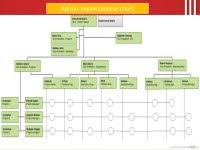 Nike Hierarchy Chart Organization Structure