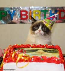 Grumpy Cat Birthday Meme Generator - Imgflip via Relatably.com