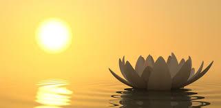 Résultats de recherche d'images pour «méditation»