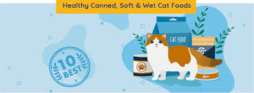 10 Best Healthy Canned Soft Wet Cat Food 2019 Unbiased