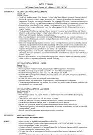 Personal Traits For Resume Example Customer Engagement Resume Samples Velvet Jobs 55