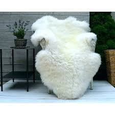 sheepskin rug white and ivory throw blanket biggest sizes review sheep washing instructions rugs ikea faux