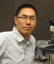 Roy Kong-Kwan Lam. I am a Ph.D. candidate from the Department of Physics and Materials Sciences at the City University of Hong Kong. For the past two years, ... - rkklam_profile
