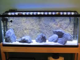 Aquarium Background Pictures Rocky 3d Aquarium Background Your Fish Stuff Store
