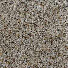 home decorators collection carpet sample madison i color yates