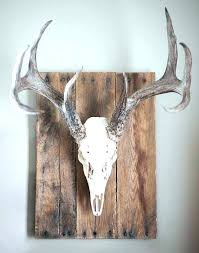 wall antlers deer antler decorating ideas decorative wall antlers decor deer antler home decor ideas antlers