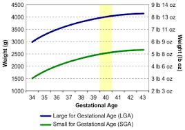 File Birth Weight Chart 2 Svg Wikipedia