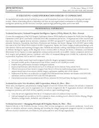 Chief Executive Officer Chief Technical Officer Resume samples