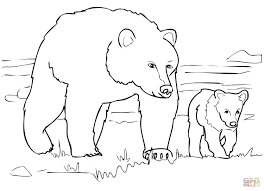 Bear Coloring Pages Preschool Grizzly Family Page Free Printable