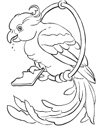 c119d688e7504c0a3fb3c96dcdd7e5d2 pet bird coloring bird on a ring from honkingdonkey com on pets for coloring