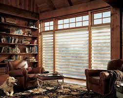 Office Window Shades  Projects To Try  Pinterest  Office Blinds Window Shadings Blinds