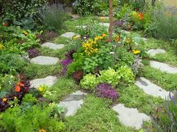 Small Picture Small Herb Garden Design Outdoor Herb Garden Design Gallery